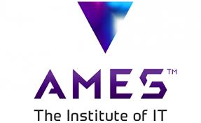 AMES Institute IT