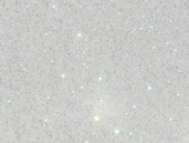 Disco Glitter : SNOW SPARKLE 5 g