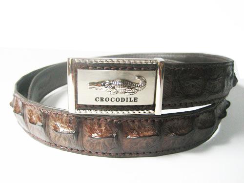 Men Genuine Crocodile Belt in Dark Brown Crocodile Leather  #CRM638B-04