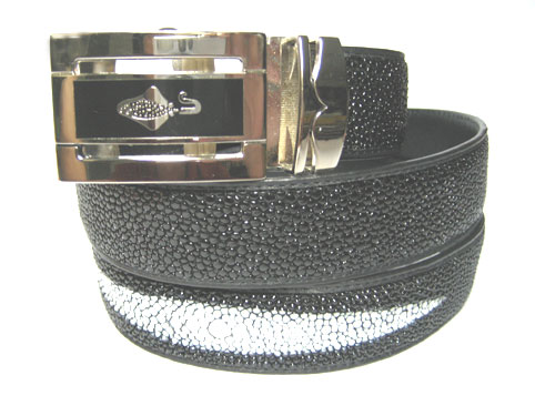 Genuine Stingray Leather Belt in Black Stingray Skin  #STM645B-01
