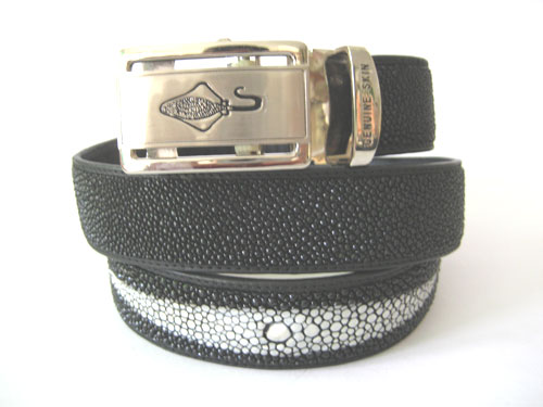 Genuine Stingray Leather Belt in Black Stingray Skin  #STM645B-02
