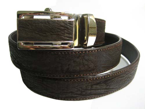 Genuine Shark Leather Belt in Brown Shark Skin  #SHM658B-02
