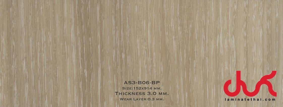 AS3-B06-BP