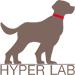 hyper lab thailand