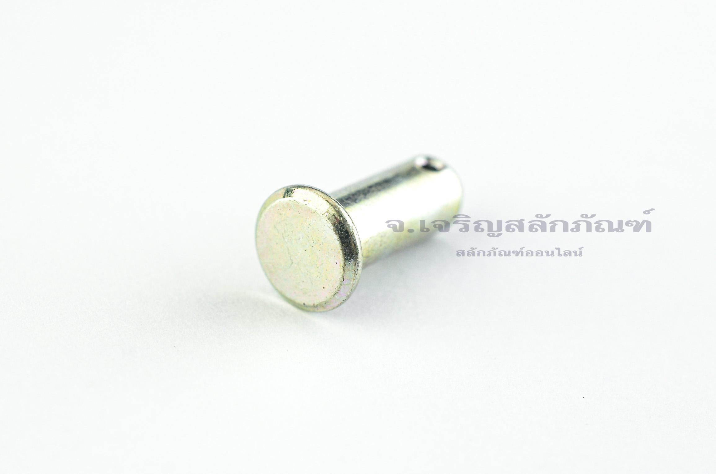 สลักหัวแบนกลม-ปิ๊นหัวแบน (Steel Clevis Pin) ขนาด 8x20