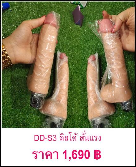 DD-S3