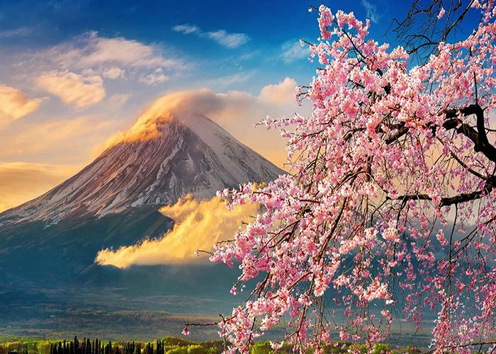 ทัวร์ญี่ปุ่น-โตเกียว