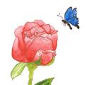ศิลปะเด็ก : ดอกไม้และสีน้ำ