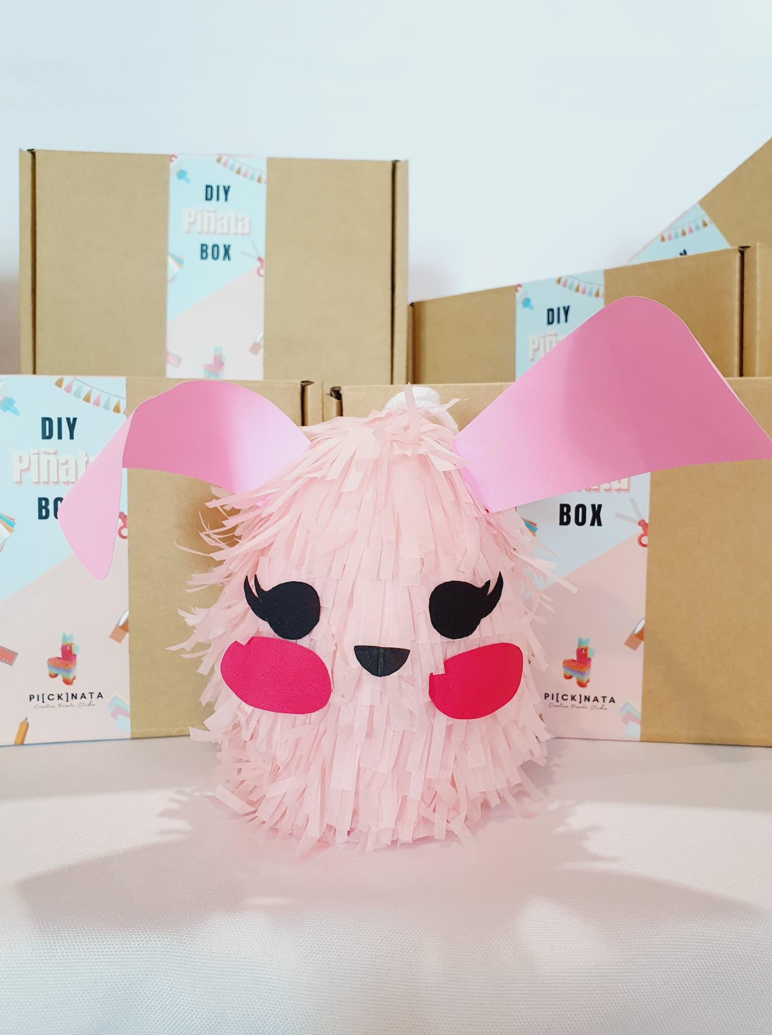 Baby Rabbit (DIY Box)