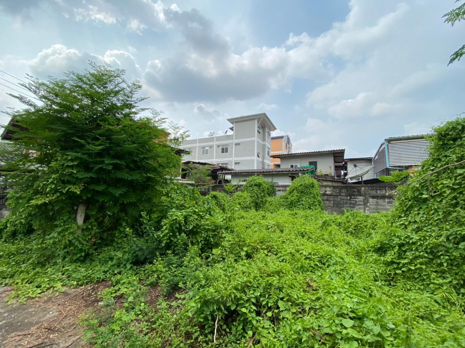 ราคาดีมาก!! ขายที่ดินเปล่าใน จรัญสนิทวงศ์13 (ซอยวัดหนัง) ทำเลดี แปลงสวย ห่างจากปากซอย ประมาณ 220 เมตร ขนาดพื้นที่ 84 ตรว.