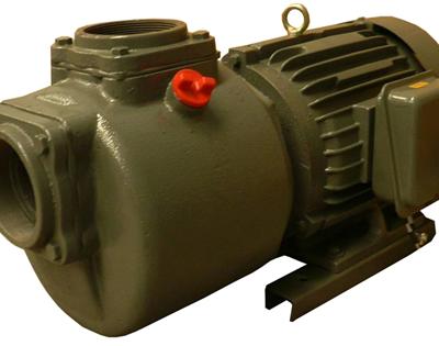 ปั๊มหอยโข่งไฟฟ้า เหล็กหล่อ  ปั๊มหลายใบพัด ARWANA HC