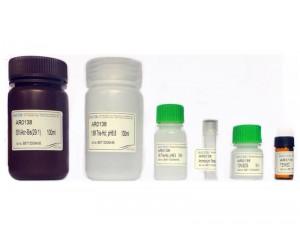 SDS-PAGE Gel Preparation Kit, 30-50 gels