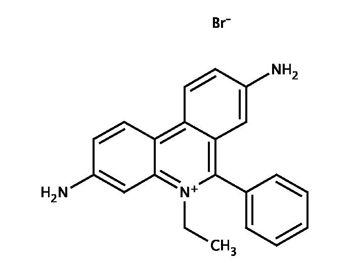 Ethidium bromide, 10mg/ml in water