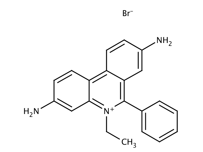 Ethidium bromide, 10mg/ml in water