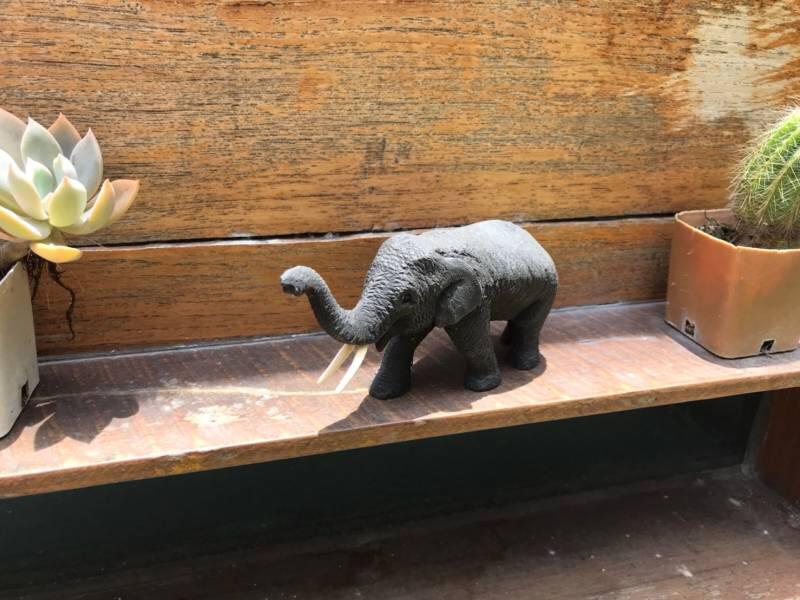 Wooden carving - Elephant