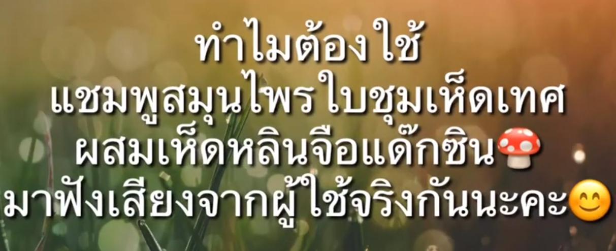 รีวิว แชมพู แด๊กซิน โดย DD เสาวภา