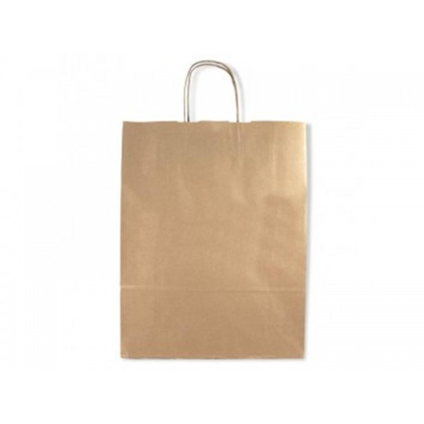 8376 Carry Paper Bag 28*26*28 cm@20