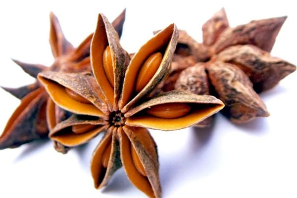 CHINESE STAR ANISE