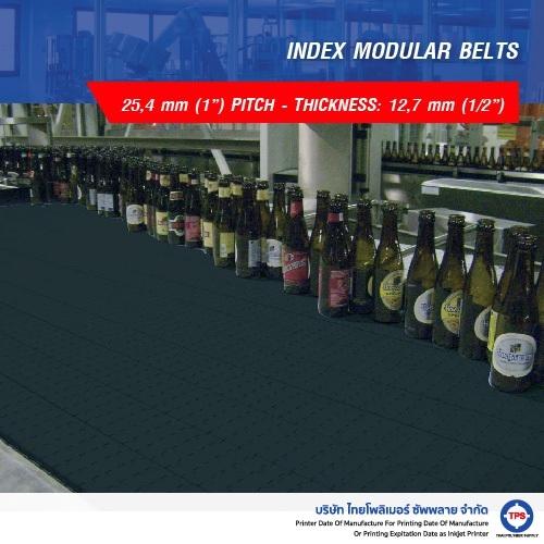 INDEX MODULAR BELTS