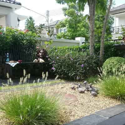 3 เทคนิคจัดสวนอังกฤษให้สวย สำหรับมือใหม่หัดจัดสวนอังกฤษแบบรวบรัด