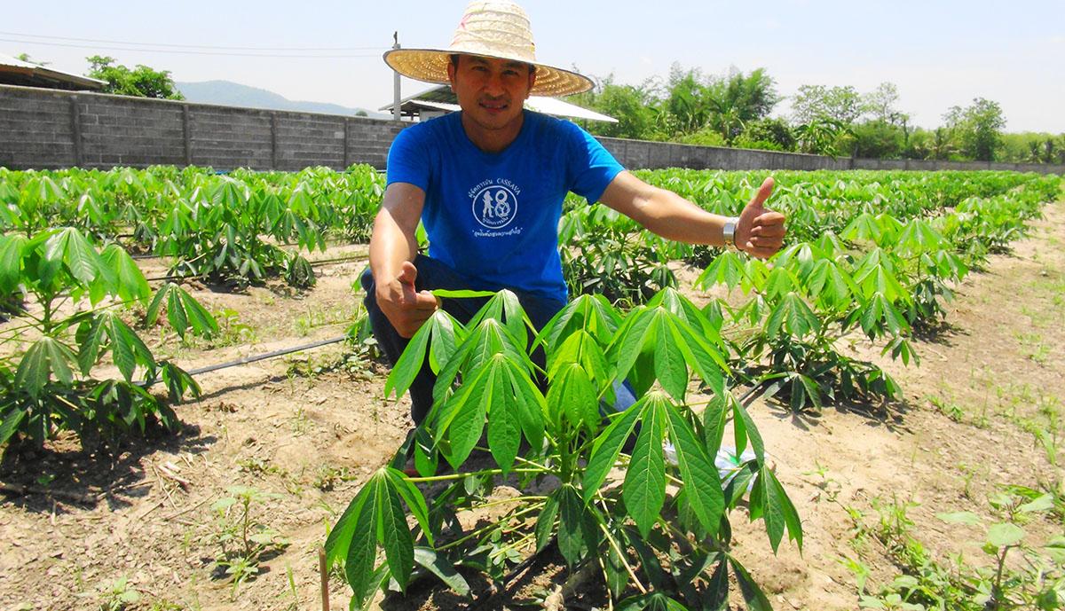 13พ.ค.เรียนรู้ฝ่าวิกฤติเศรษฐกิจด้านการเกษตร!! ไม่ให้เป็นหนี้ ลดต้นทุนที่แท้จริง|ผู้จัดการมันอบรม