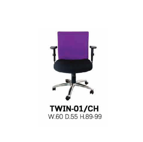 TWIN-01/CH