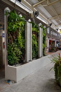 TPJ Market Suphanburi