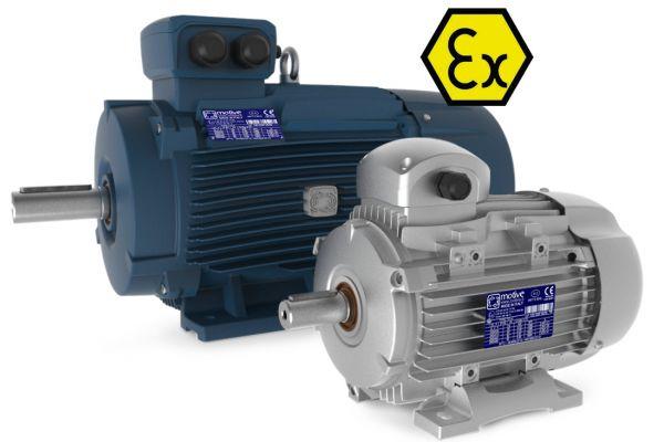ATEX motors