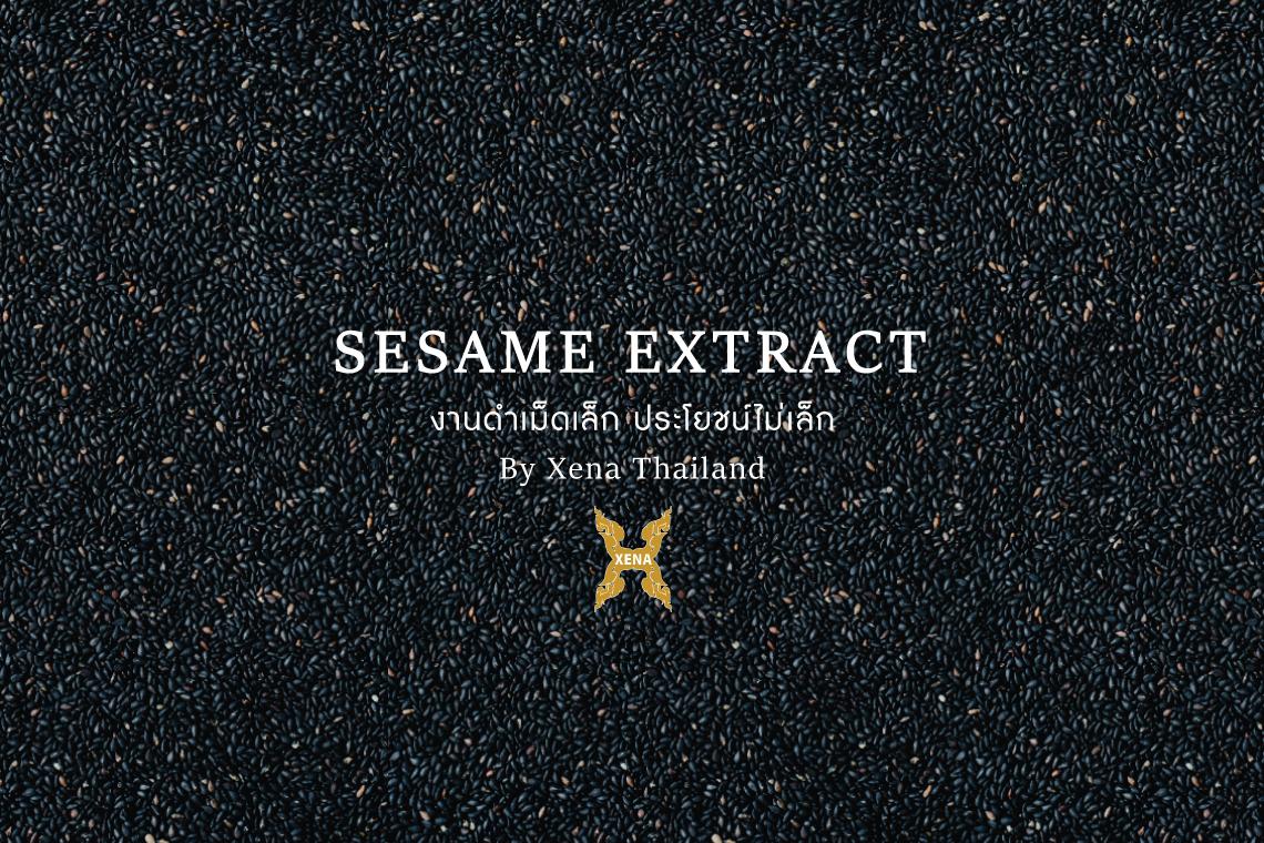 งาดำเม็ดเล็ก ประโยชน์ไม่เล็ก - Xena Thailand