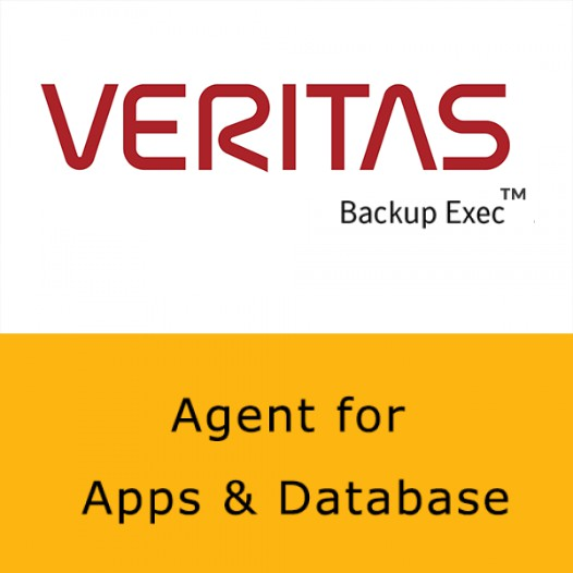 Veritas Agent for Applications and Database