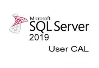 SQLCAL 2019 SNGL OLP NL UsrCAL
