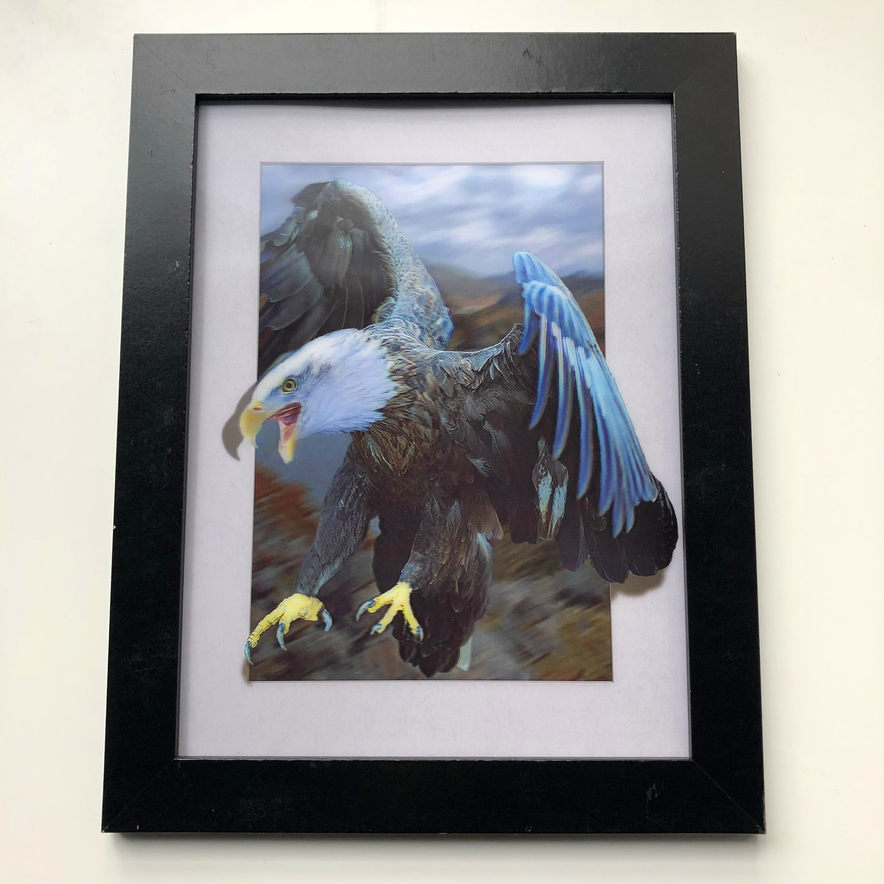 House natural pictures 3d/5d wallpaper modern home decoration of eagle