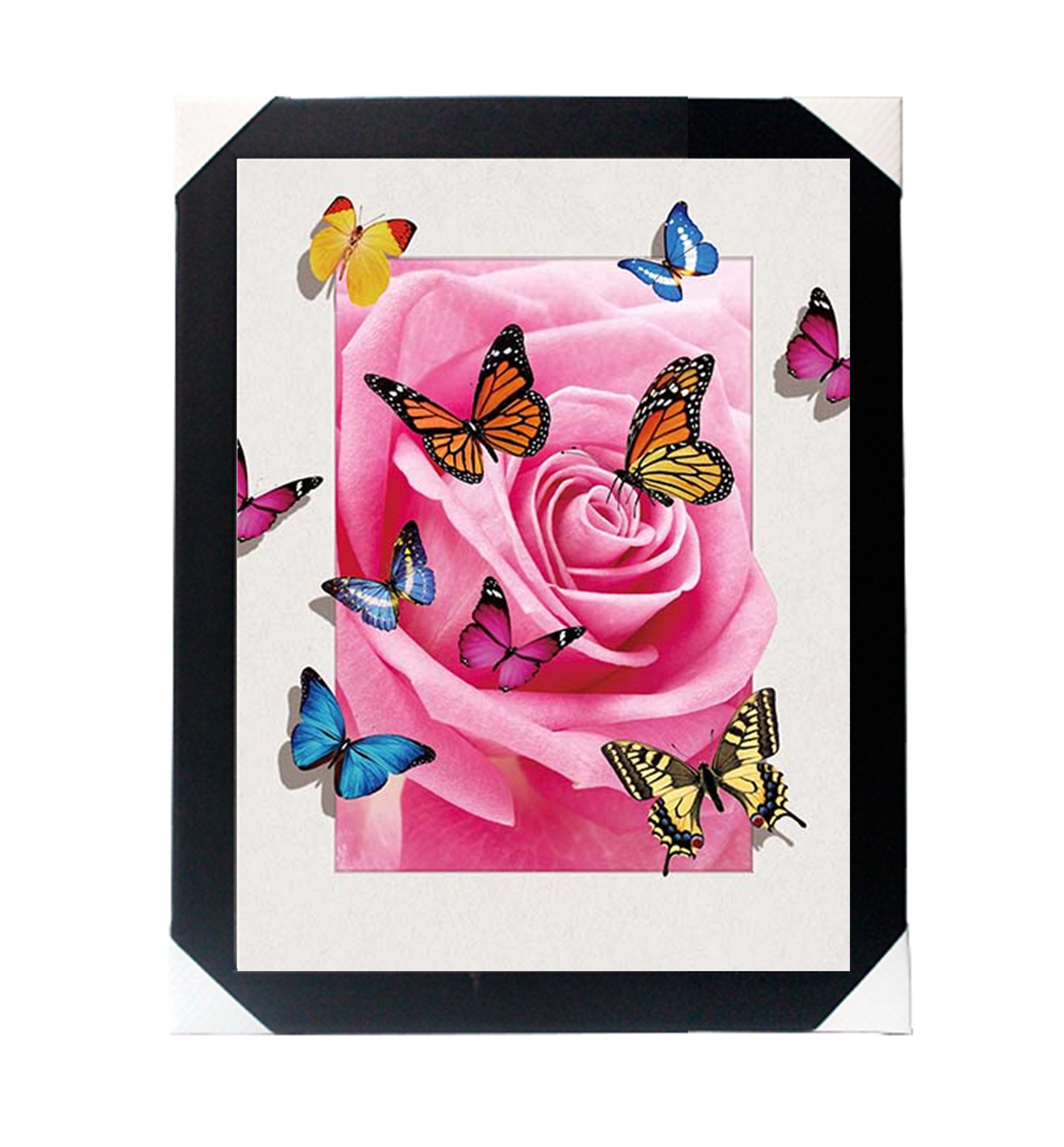 lenticular printing 5d picture of butterfly