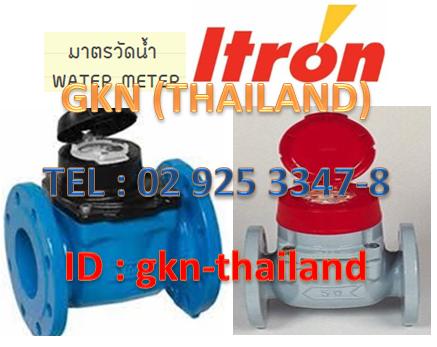 """มิเตอร์น้ำ WATER METER """"ITRON"""""""