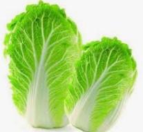 白菜是个宝,赛过灵芝草
