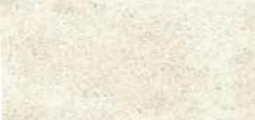 SAYLEE - WHITE - SG4N6D NATURAL