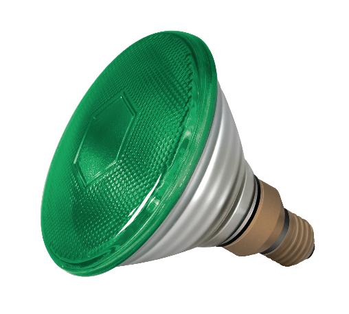 PAR38 120w Green E27
