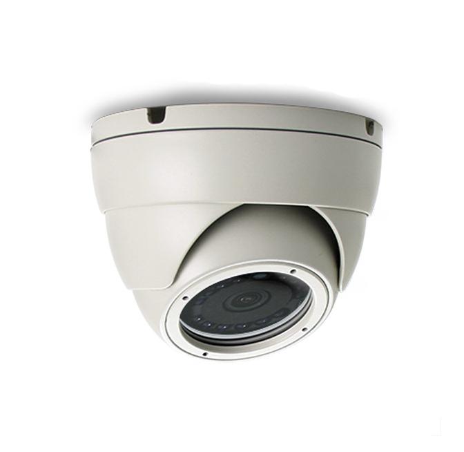 กล้องวงจรปิด AVTECH รุ่น AVT401AXPF