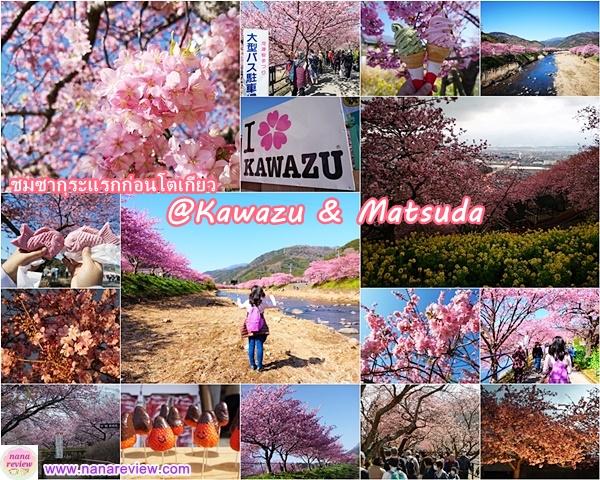 Kawazu and Matsuda Sakura Festival
