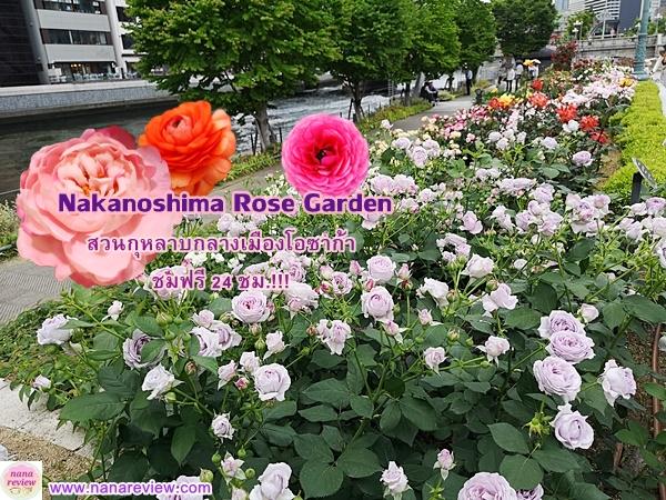 Nakanoshima Rose Garden