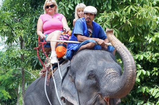 Elephant Trekking 30 minutes