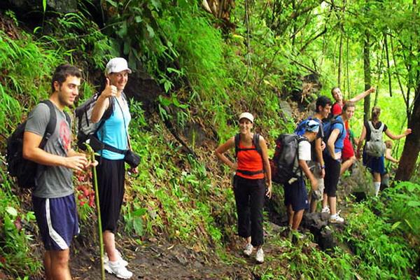 โปรแกรมเต็มวัน เดินป่าอำเภอแม่แตง (เดินอย่างเดียว 4 ชั่วโมง)