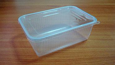 กล่องข้าวหลุมเดียว 1,000 กรัม PP ใส