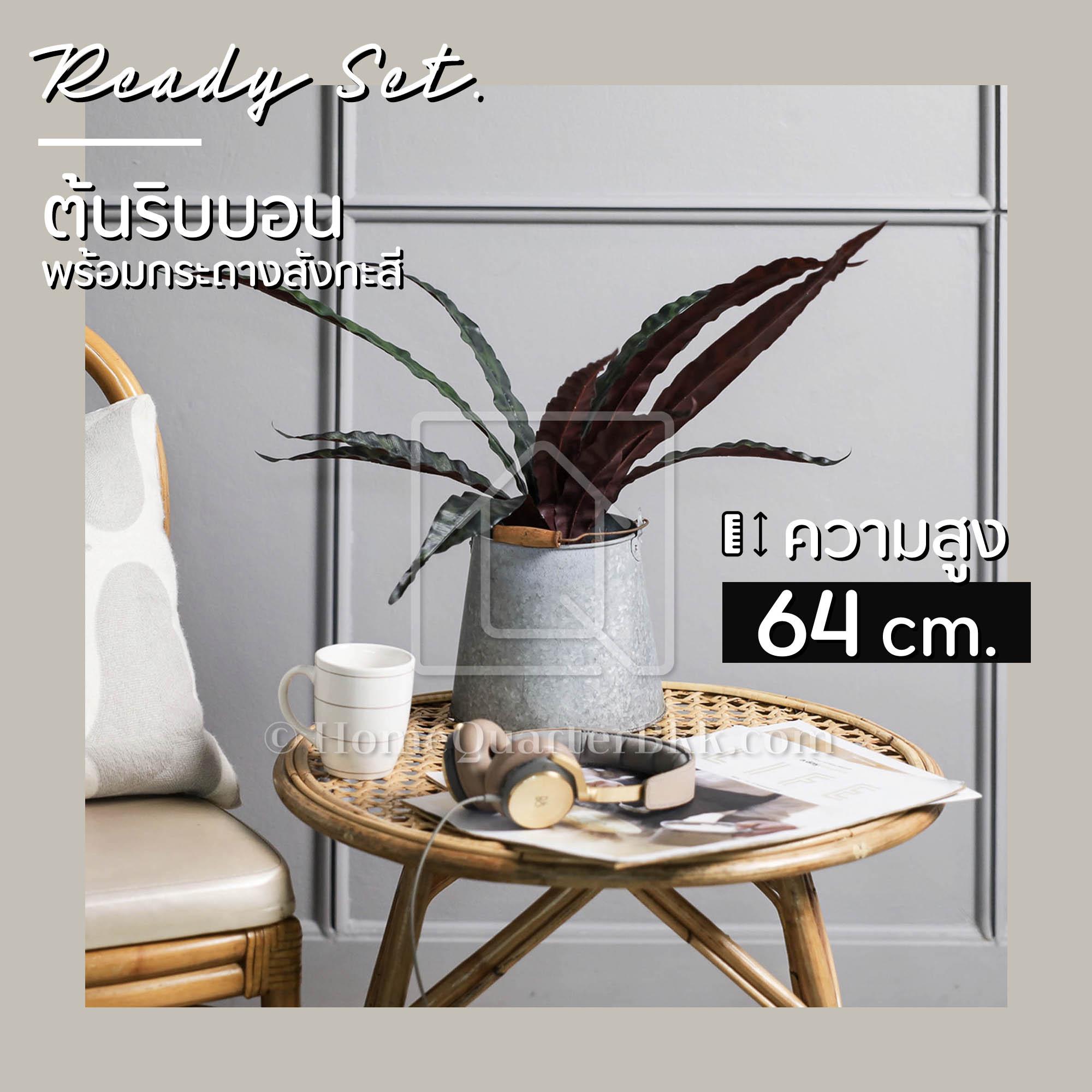 Ready Set - Cosy Ribbon