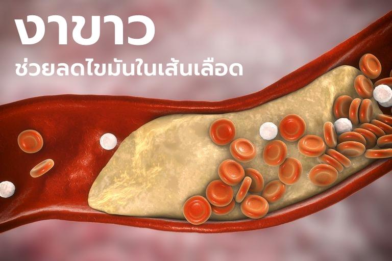 """ในงาขาว มี """"สารเซซามอล"""" (Sesamol) ช่วยลดไขมันในเลือดได้"""