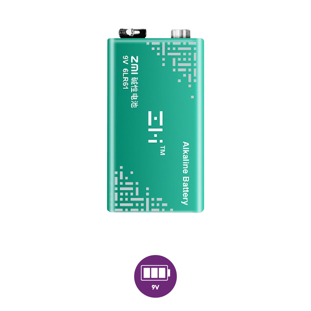 ZMI 6LR61 alkaline battery 9V