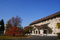 เที่ยวพิพิธภัณฑ์แห่งชาติ โตเกียว พิพิธภัณฑ์เก่าแก่ และใหญ่ที่สุดของญี่ปุ่น
