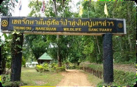 Thung Yai Naresuan Wildlife Sanctuary