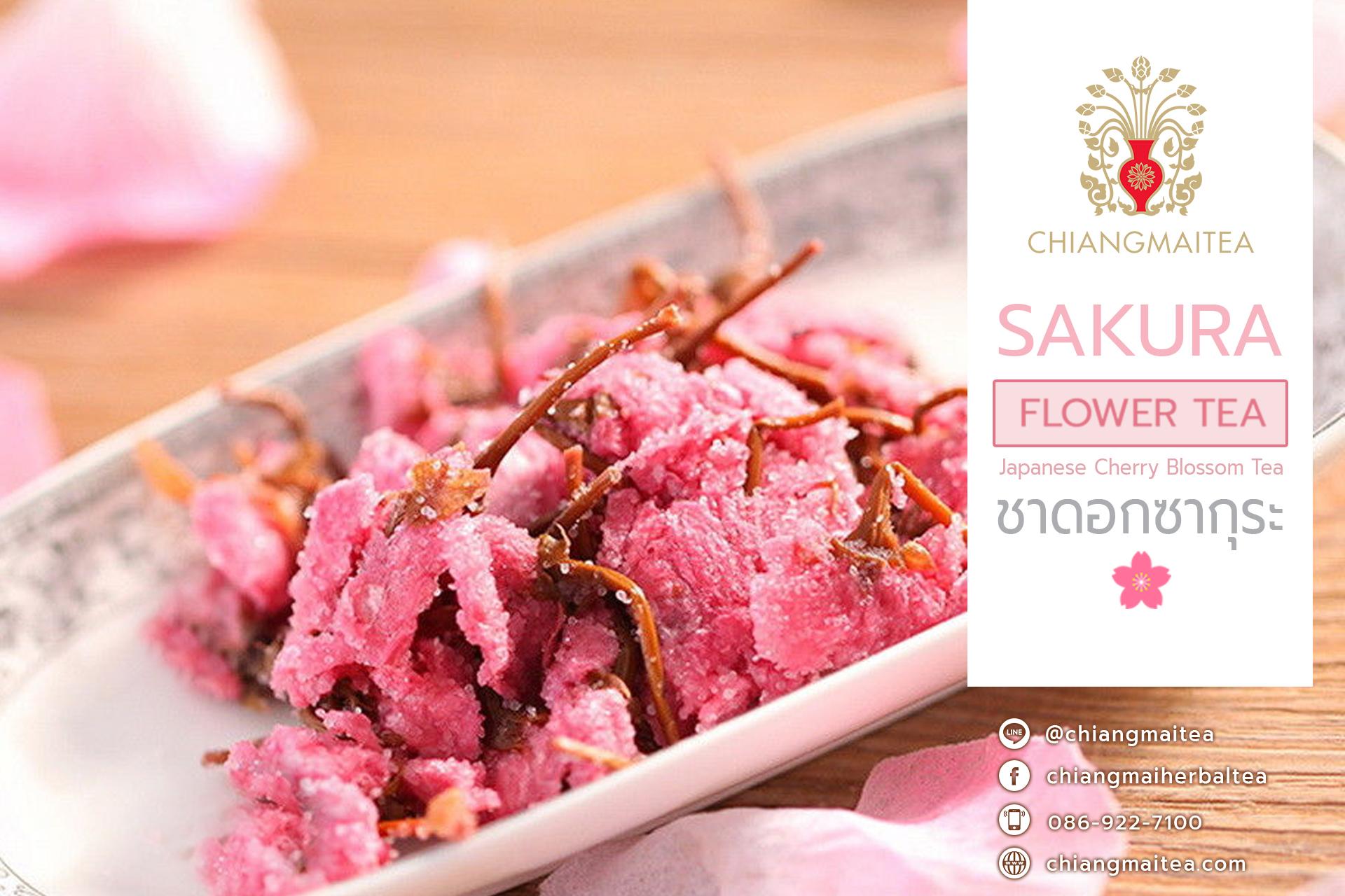 ชาดอกซากุระ (Sakura FlowerTea)