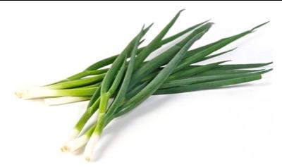 spring onion ต้นหอม